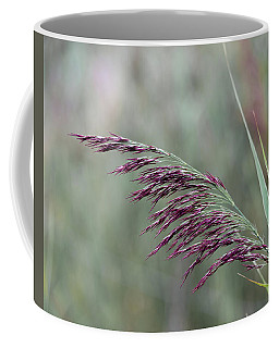 Coffee Mug featuring the photograph Common Reed Flower Stalk by Scott Lyons