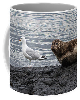 Common Seal And The Gull Coffee Mug