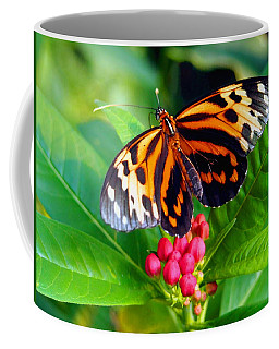 Common Tiger Glassywing Butterfly Coffee Mug