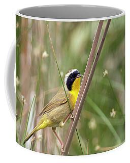 Common Yellowthroat In The Marsh Coffee Mug