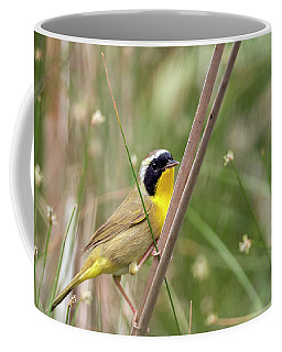 Common Yellowthroat In The Marsh Coffee Mug