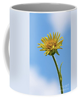 Compass Plant Coffee Mug
