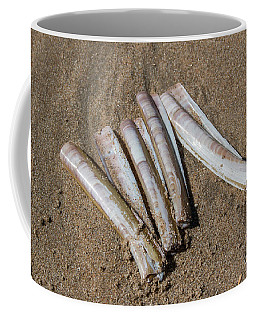 Coffee Mug featuring the photograph Composition #1 by Ana Mireles