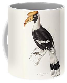 Concave Hornbill Coffee Mug