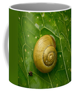 Coffee Mug featuring the photograph Conch by Jouko Lehto