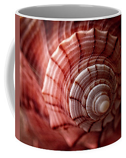 Conch Shell Coffee Mug