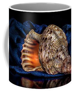 Conch Shell Coffee Mug