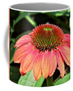 Cone Flower Coffee Mug