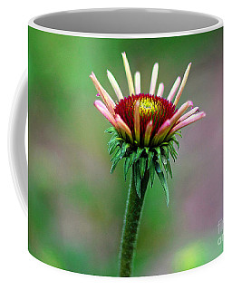Coneflower Bloom Coffee Mug