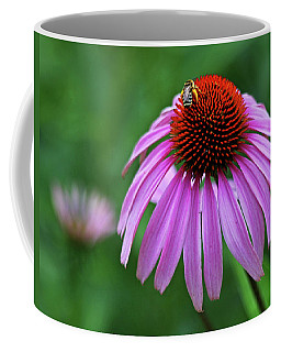 Coffee Mug featuring the photograph Coneflower by Judy Vincent