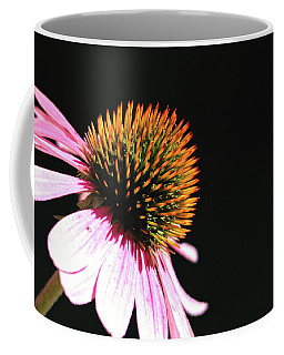 Coffee Mug featuring the photograph Coneflower by Trina Ansel