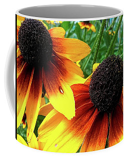 Coffee Mug featuring the photograph Coneflowers by Robert Knight