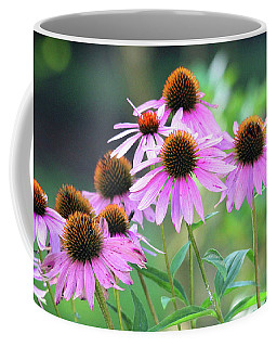 Coffee Mug featuring the photograph Coneflowers by Trina Ansel