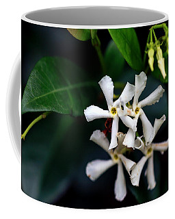 Confederate Jasmine Coffee Mug by Sennie Pierson