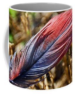 Congo African Grey Feather Coffee Mug