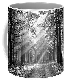 Conifer Forest In Fog Coffee Mug