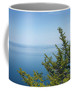 Coffee Mug featuring the photograph Coniferous Trees On Blue Sky Background by Sergey Taran