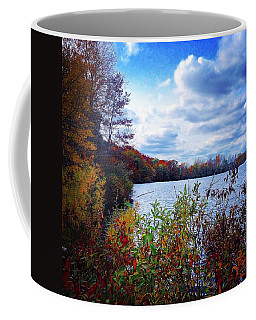 Conservation Park And Pine River In The Fall Coffee Mug