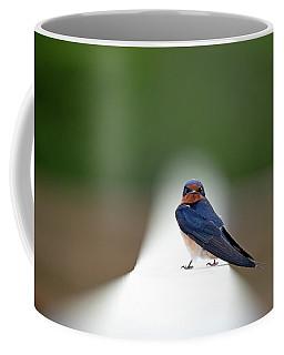 Contemporary Swallow Coffee Mug