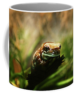 Coffee Mug featuring the photograph Content by Anthony Jones
