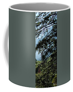 4 Of 4 Controlled Burn Of Yosemite Section Coffee Mug