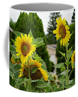 Conversing Sunflowers Coffee Mug