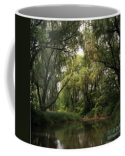 Cook County Forest Preserve No 6 Coffee Mug by Kathy McClure