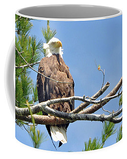 Cool Breeze Coffee Mug by Glenn Gordon