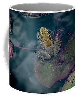 Cool Frog-hot Day Coffee Mug