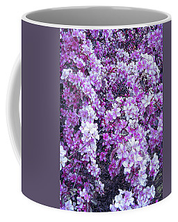 Coffee Mug featuring the photograph Cool Sunset Beautiful Blossoms by Aimee L Maher Photography and Art Visit ALMGallerydotcom