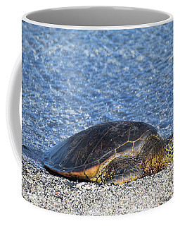 Coffee Mug featuring the photograph Cooling Off by Pamela Walton