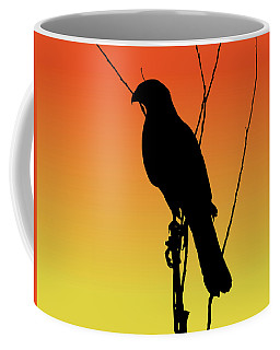 Coopers Hawk Silhouette At Sunset Coffee Mug