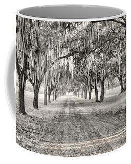 Coosaw Plantation Avenue Of Oaks Coffee Mug