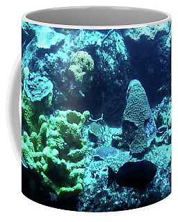 Coffee Mug featuring the photograph Coral Art 4 by Francesca Mackenney