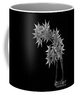 Coral Bark Maple Coffee Mug