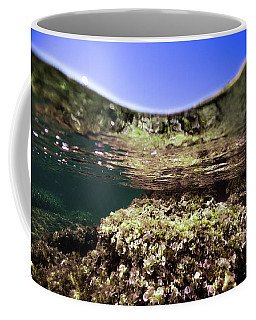 Coral Beauty Coffee Mug