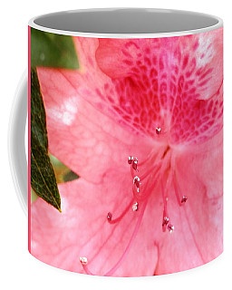 Coffee Mug featuring the photograph Coral Pink Azalea Goodness by Belinda Lee