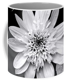 Coffee Mug featuring the photograph Coreopsis Flower Black And White by Christina Rollo
