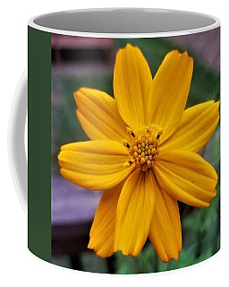 Coreopsis Coffee Mug