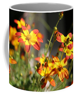 Campfire Fireburst Coffee Mug by Living Color Photography Lorraine Lynch