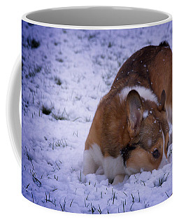 Coffee Mug featuring the photograph Corgi Nose Plant In Snow by Mick Anderson