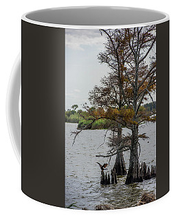 Coffee Mug featuring the photograph Cormorant by Paul Freidlund