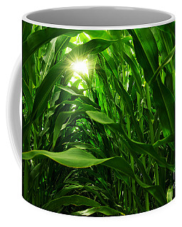 Corn Field Coffee Mug by Carlos Caetano