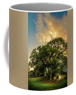 Coffee Mug featuring the photograph Corner Oak by Marvin Spates