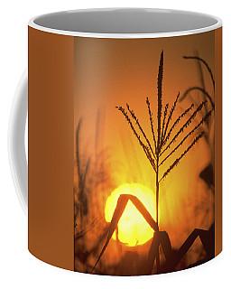 Cornfield Sunset Coffee Mug