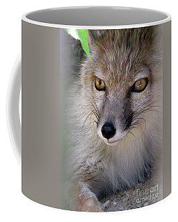Coffee Mug featuring the photograph Corsac Fox- Vulpes Corsac 03 by Ausra Huntington nee Paulauskaite