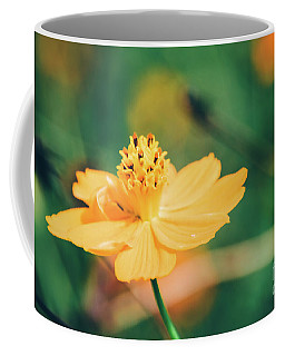 Coffee Mug featuring the photograph Cosmos  by Andrea Anderegg