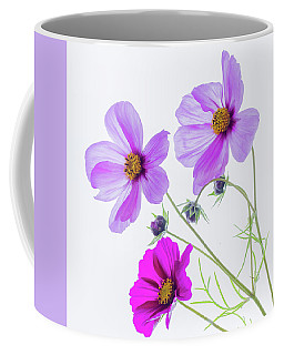 Cosmos Bright Coffee Mug