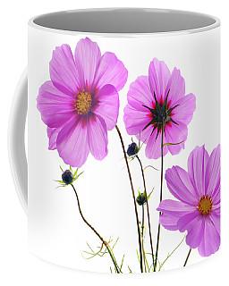 Cosmos Trio Coffee Mug