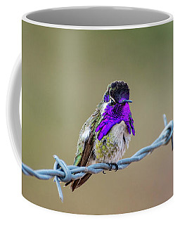 Costa's Hummingbird Coffee Mug